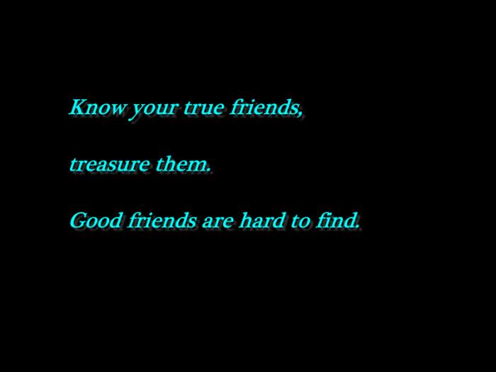 PhoXo15a True friends